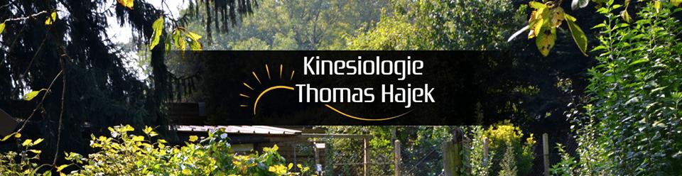Kinesiologie Thomas Hajek