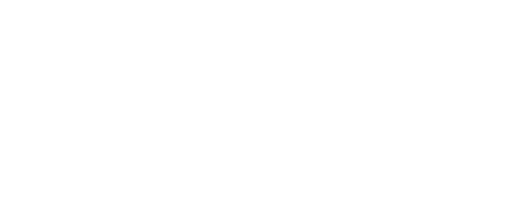 Logo Profisprecher Rudolf Schwarz